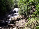 st-lucia-rain-forest-waterf.jpg