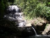 st-lucia-rainforest-waterfa.jpg